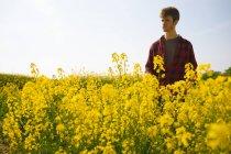Uomo in piedi nel campo di senape nella giornata di sole — Foto stock