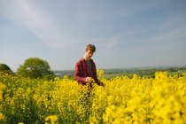 Man checking crops in the mustard field on sunny day — Stock Photo