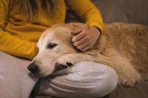 Fille caresse son chien dans le salon à la maison — Photo de stock