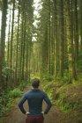 Vista posterior del hombre de pie en un exuberante bosque - foto de stock
