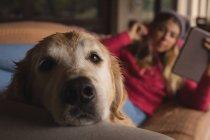 Mädchen mit Hund mit digital-Tablette im Wohnzimmer zu Hause — Stockfoto