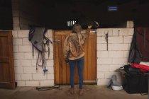 Vista trasera de una chica acariciando un caballo en el rancho — Stock Photo