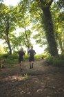 Двое мужчин бегают вместе в учебном лагере в солнечный день — стоковое фото