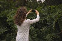 Женщина фотографирует растение с мобильного телефона в саду — стоковое фото