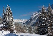 Засніжені гори і незабутнім, протягом зими в Revelstoke, Британська Колумбія, Канада — стокове фото
