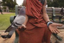 Pigeon perching on maasai man hand in park — Stock Photo