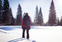 Rear view of woman walking on snowy landscape — Stock Photo