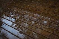 Nasser Holzboden nach Regen mit Reflexion — Stockfoto