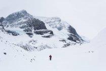 Feminina alpinista caminhar sobre a neve cobriu a montanha durante o inverno — Fotografia de Stock