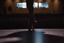 Ritagliate la vista del ballerino danza sul palco al Teatro — Foto stock