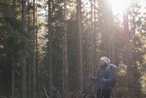 Жіночий мандрівного, стоячи в лісі на сонячний день — стокове фото