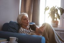 Senior woman sitting on sofa with her cat while using mobile phone in living room at home — Stock Photo