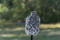 Ziel für einen Schießstand an einem sonnigen Tag — Stockfoto