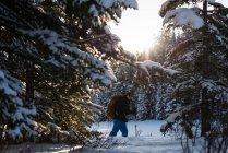 Homem de raquetes com mochila no bosque nevado. — Fotografia de Stock