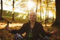 Senior mujer practicando yoga en un parque en un día soleado - foto de stock