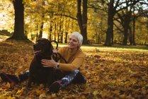 Старшая женщина сидит на земле и гладит свою собаку в парке в солнечный день — стоковое фото