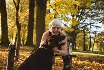 Старшая женщина в парке топит свою собаку в солнечный день — стоковое фото