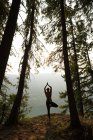 Fit woman performing stretching exercise in a lush green forest at the time of dawn — Stock Photo