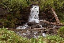 Bella cascata nella foresta in una giornata di sole — Foto stock