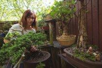 Frau arbeitet im Garten an einem sonnigen Tag — Stockfoto