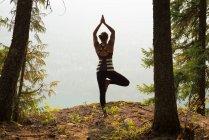 Mujer en forma realizando ejercicio de estiramiento en un exuberante bosque verde a la hora del amanecer - foto de stock