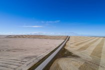 Empty road passing through wheat field on a sunny day — Stock Photo