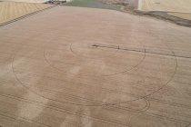 Aerea delle linee sul campo di grano raccolto — Foto stock