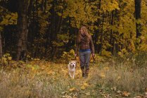 Red haired woman walking in autumn forest with pet dog — Stock Photo