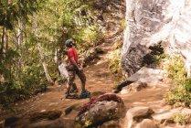Мандрівного готував себе піднятися Скелясті гори у лісі — стокове фото