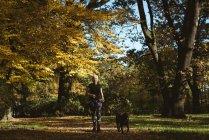 Mulher sênior andando no parque com seu cão de estimação em um dia ensolarado — Fotografia de Stock
