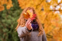 Foglie di acero rosso, giallo e marrone di rappresentazione della donna nella sosta di autunno — Foto stock