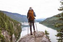 Vista posteriore di donna matura in piedi sulla roccia e guardando bella montagna — Foto stock