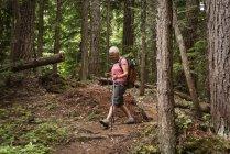 Mulher madura com caminhadas postes andando na floresta — Fotografia de Stock