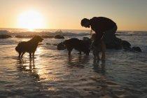 Отец и сын, играя на пляже во время заката — стоковое фото