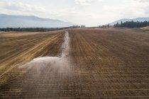 Sistema de riego rociando agua en el campo en un día soleado - foto de stock