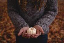 Partie médiane de la femme tenant la citrouille blanche pendant l'automne — Photo de stock