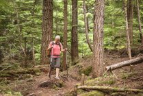 Mature woman walking with hiking poles in the forest — Stock Photo