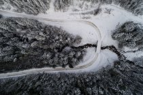 Overhead view of winding road passing through snow covered forest — Stock Photo