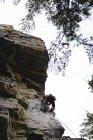 Déterminée de grimpeur escalade la montagne rocheuse — Photo de stock