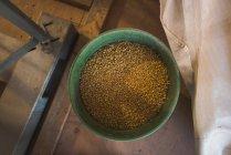 Накладные расходы изысканный пшеницы в ведро на ферме — стоковое фото