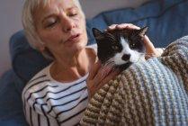 Крупный план пожилой женщины, сидящей на диване и гладящей кошку дома — стоковое фото