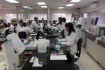 Команда лабораторії техніків працюють разом в крові банку — стокове фото