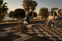Senior couple riding bicycle at promenade on a sunny day — Stock Photo