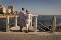 Rear view of senior couple standing near sea side at promenade — Stock Photo