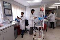 Techniciens de laboratoire travaillant ensemble dans une banque de sang — Photo de stock
