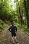 Rear view of man standing in forest — Stock Photo