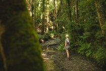 Задній вид на жінку, що стояли в лісі — стокове фото