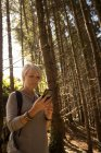 Жінка, що використання мобільного телефону у лісовій сонячний день — стокове фото