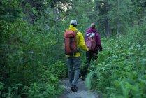 Задній вид пара Піші прогулянки в ліс — стокове фото