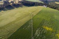 Vue aérienne du champ vert à la campagne — Photo de stock